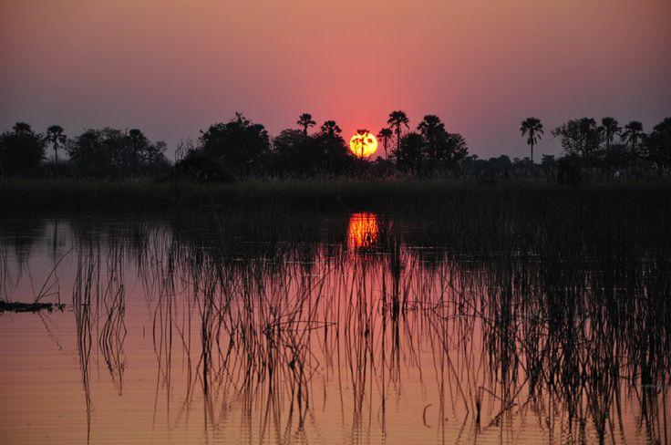 Il tramonto di Malindi,le palme e le perline colorate.  Malindi sunset, palms and colored beads.