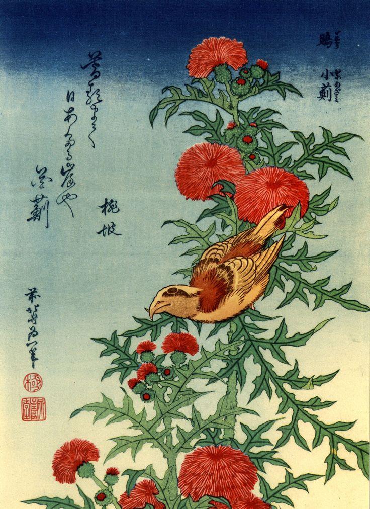 arte japonesa: katsushika hokusai