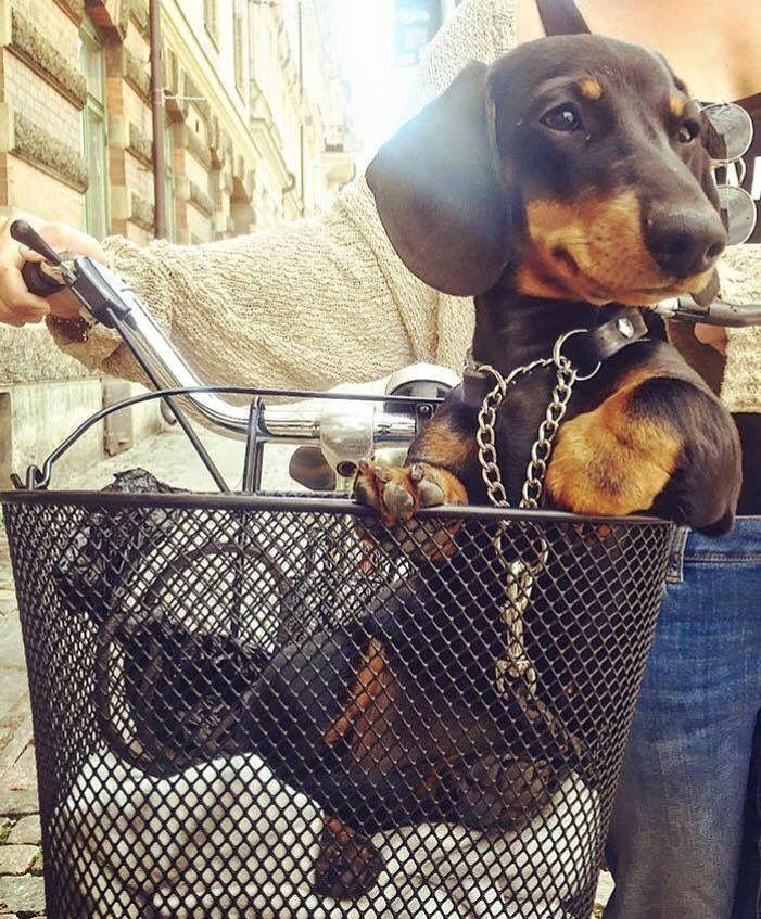 Lovin' his ride.