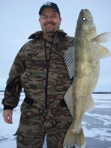 25 best types of fishes images on pinterest for North dakota walleye fishing