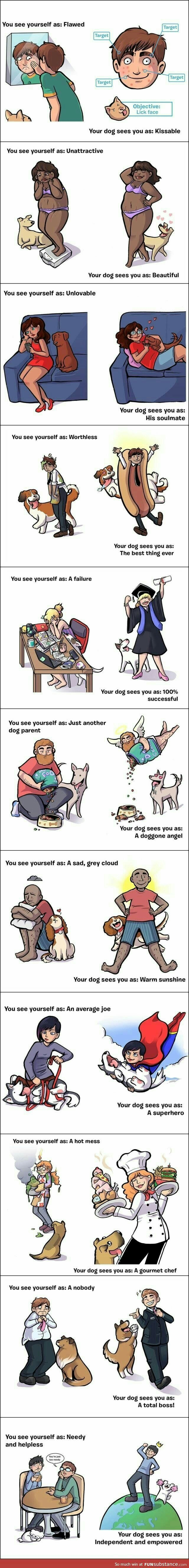 As soon as I move out and have spare time, I'd love to have a dog <3