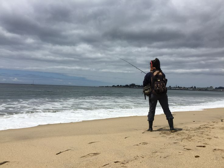 7 best surf perch fishing images on pinterest surf for Surf fishing northern california