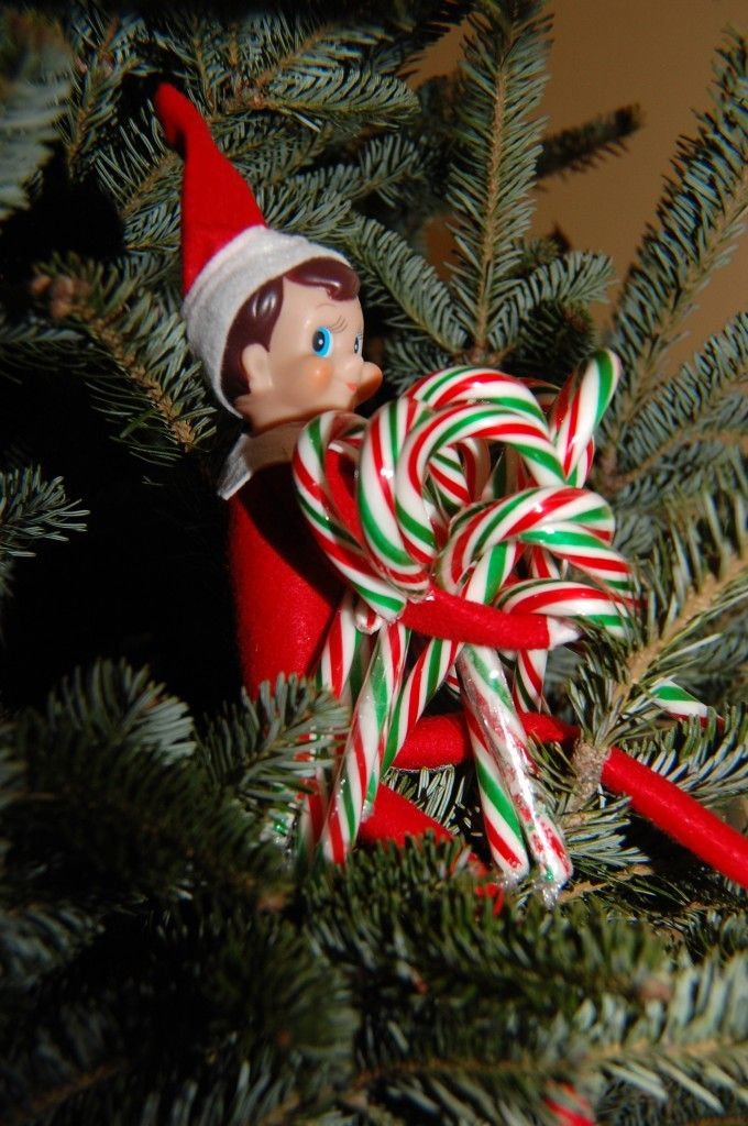 Hoarding candy canes