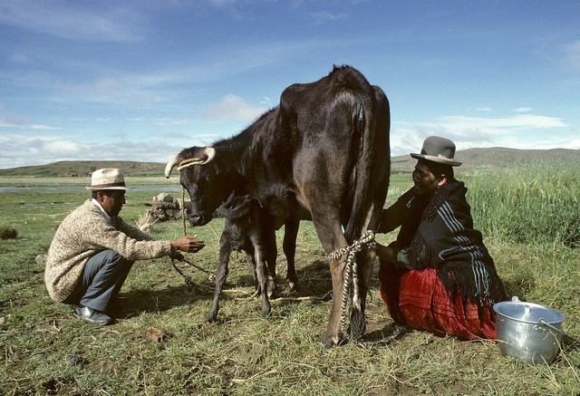 Subsistence Farming in Altiplano, Bolivia by United Nations Photo, via Flickr
