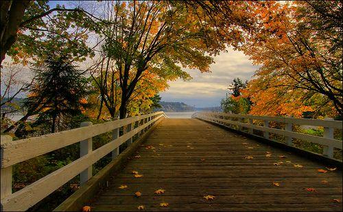 Bridge to the sound with fall color, Tacoma, Washington