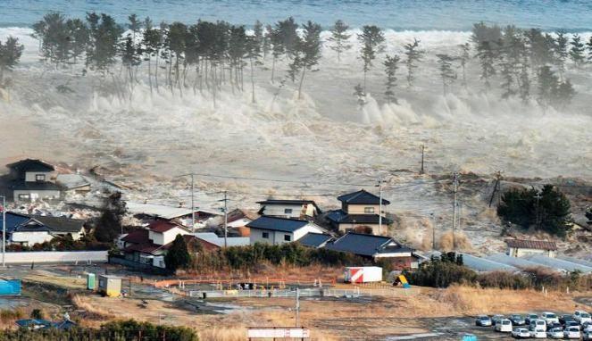 Tindakan  Menghadapi  Gempa  Bumi,  Tsunami,  Angin  Topan di Jepang