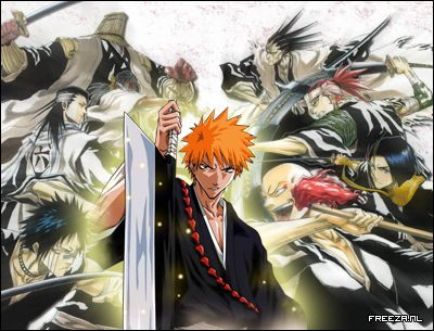 Bleach - I love  this battle anime it has trully brilliant and intense fights a wealth of interesting and epic characters and some brutal and fantastic fights. This is just so enjoyable.