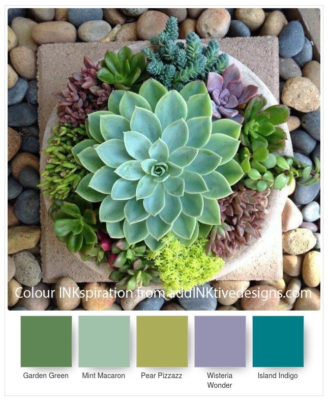 SU Colour Combinations for Paper Succulents