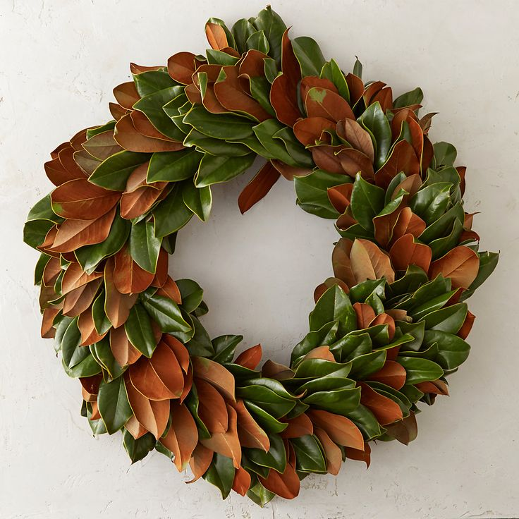 """A blend of glossy, green and golden leaves makes this fresh, hand-crafted magnolia wreath a stylish selection for winter decorating.- Fresh magnolia leaves, metal leaf frame- For best longevity, mist as needed and keep away from heat when used indoors- Indoor or outdoor use- Handmade in the USASmall: 3""""D, 24"""" diameterLarge: 3""""D, 34"""" diameterOrder by 10A EST on Tuesday, 11/17 for delivery by Thanksgiving.Order by 10A EST on Friday, 12/18 for delivery by Christmas."""
