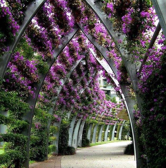 An amazing modern public garden with purple flowers.