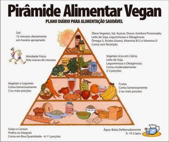 Proteínas, ferro e B12 para crianças vegetarianas   Escola Líder de Ouro