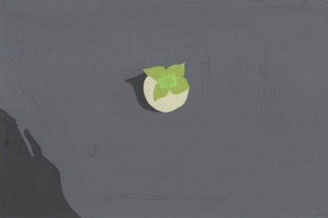 落ちた青柿。