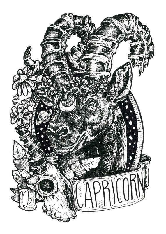 capricorn ▵ bird black  www.etsy.com/shop/BirdBlackEmporium