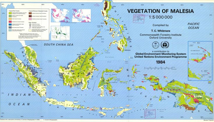 Vegetation map of Malesia, 1984. Malesia is a biogeographical region and a floristic region, corresponding politically to Malaysia, Singapore, Indonesia, Brunei, the Philippines, and Papua New Guinea.