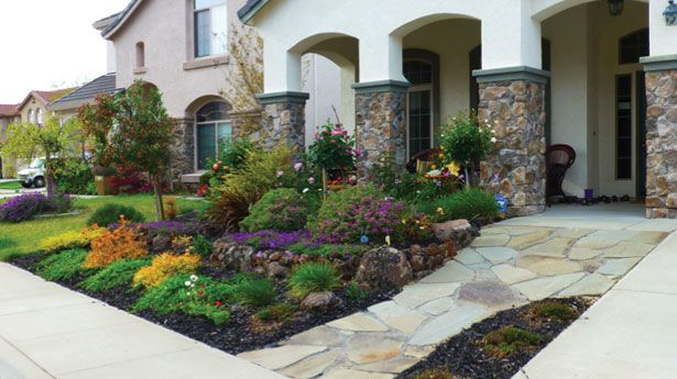 No grass front yard google search garden fun for Garden design ideas canada