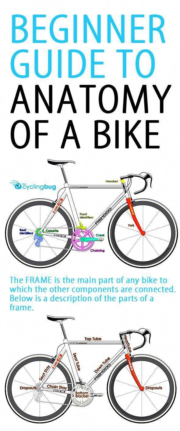 Cycling Roadbikemen Cycling For Beginners Bicycle Bike