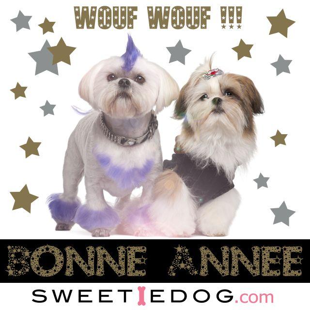 Bonne année 2014 ! www.sweetiedog.com -vêtements et accessoires pour chiens