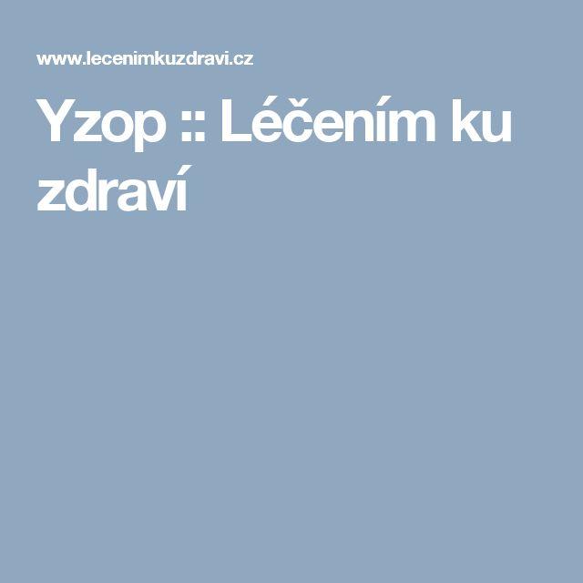 Yzop :: Léčením ku zdraví