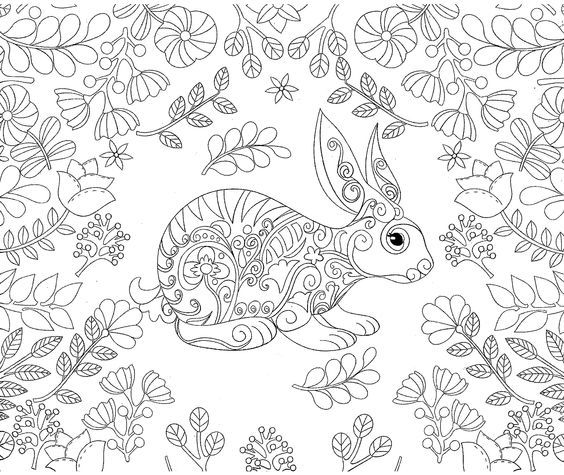 coloring sheets adult coloring bunny coloring pages coloring books animal drawings pencil drawings beautiful patterns bullet journal rabbit