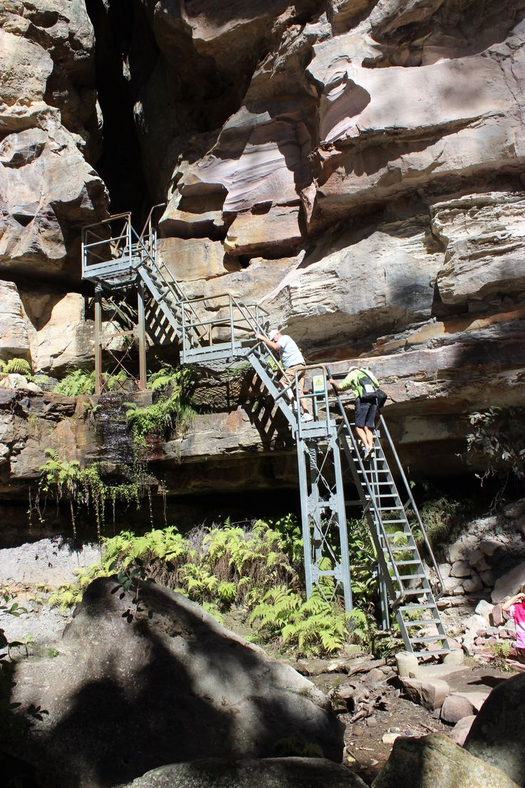 The stairs to the entrance to the Amphitheater, Carnarvon Gorge, QLD