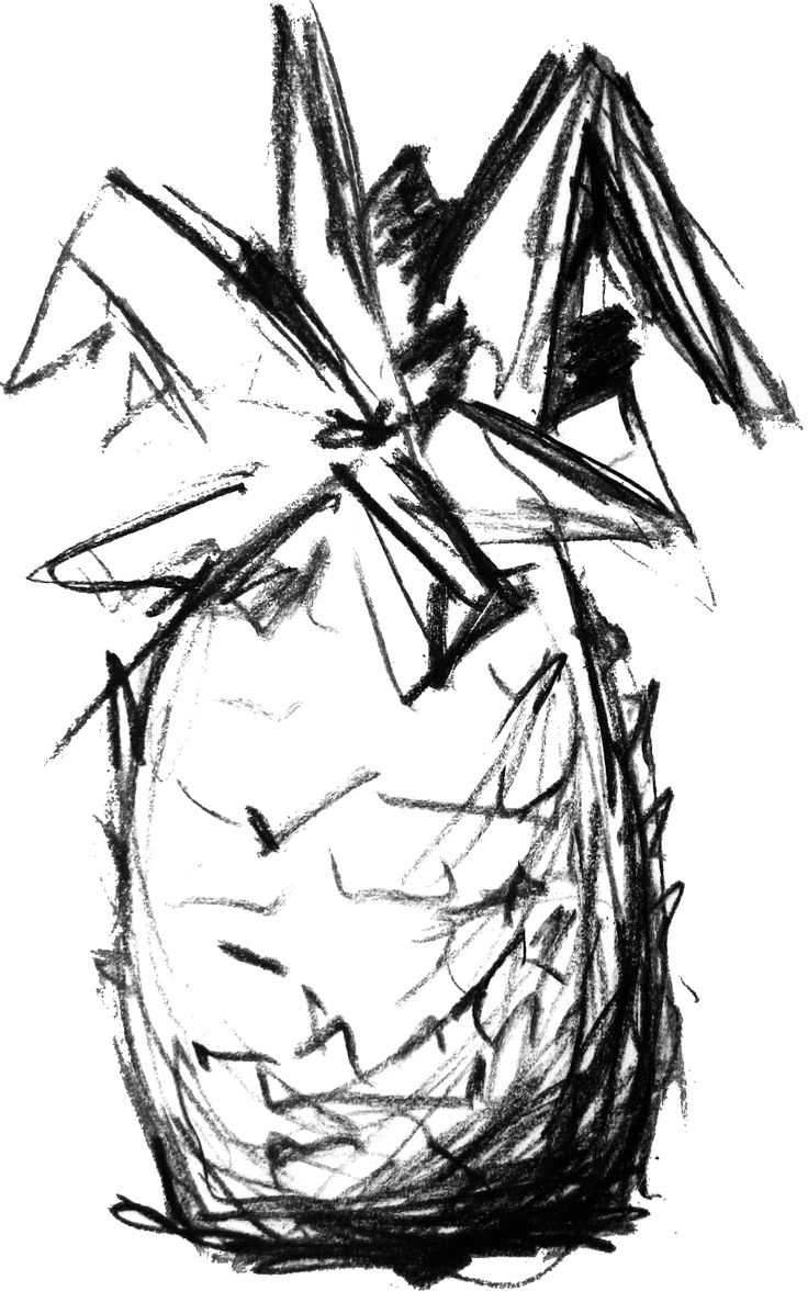 Pineapple Drawing | it around a couple of times, Billobi finally recognize the drawing ...