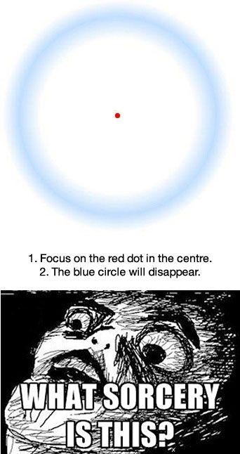 1. Concentrez-vous sur le point rouge.  2. Le cercle bleu disparaît.