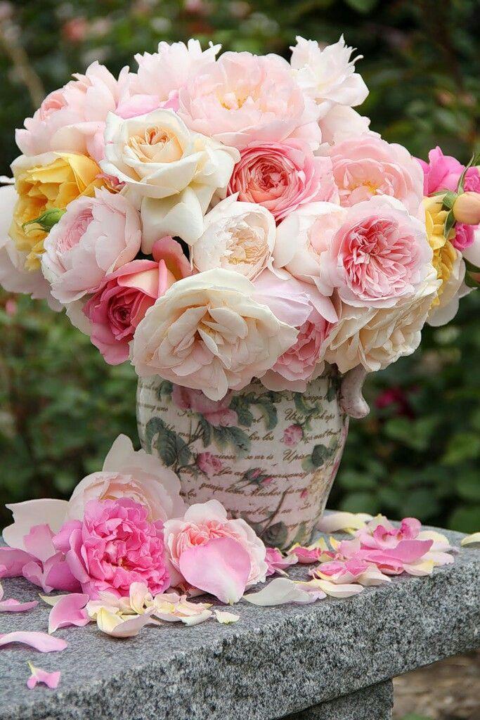 Рождеством друга, милые картинки с розами
