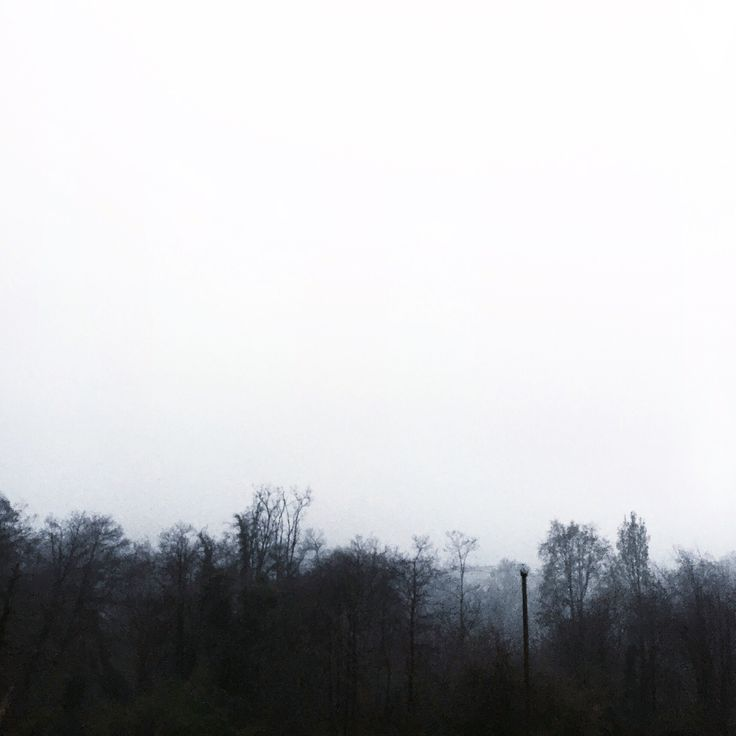 A misty landscape is indeed a dreamy sight. (Italy)