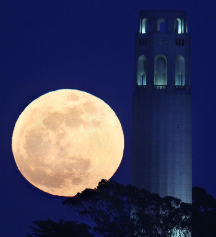 The May's full moon rises beside San Francisco's Coit Tower on May 5, 2012. (Frederic Larson/San Francisco Chronicle/Associated Press): Towers, Super Moon, Sanfrancisco, Full Moon, San Francisco, Supermoon, Photo