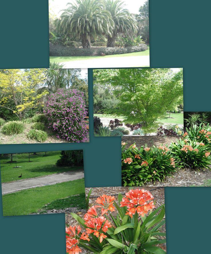Dame Elizabeth Murdoch Arboretum