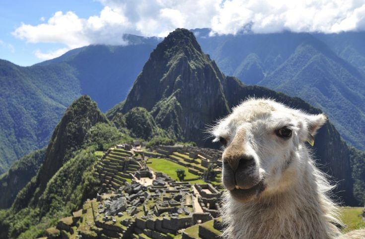 Tengo ganas de sentir la vibra mágica de Machu Picchu. De pararme frente a la ciudadela y leer el poema de Neruda.