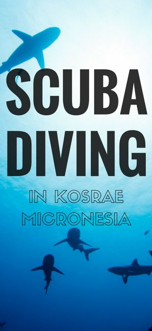 Thinking of heading to Micronesia to go scuba diving? Maybe Kosrae is just the place?