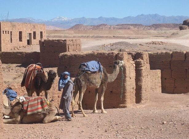 Du möchtest auf eigene Faust durch Marokko reisen? Alle Informationen rund um Planung, Visum, Wetter, Währung, Impfungen, Reisedauer, Sicherheit & Kosten.