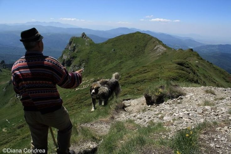 Explore+the+amazing+karst+relief+of+the+Ciucas+Mountains,+part+of+the+Carpathian+range+that+crosses+Romania