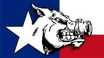 Texas Hog Hunt. B Outfitters. Easttexasexotics.com