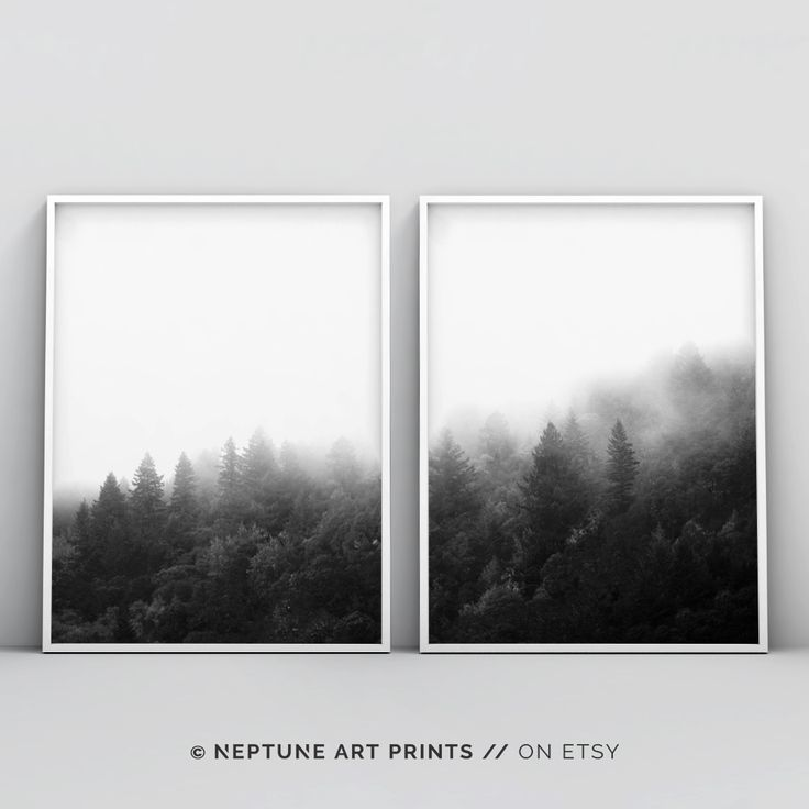 Forest Art 2 Piece Forest Printable Black And White Forest Minimalist Landscape Trees Fog Top Selling Nature Photography Prints Set Minimalist Landscape Forest Art Black White Landscape