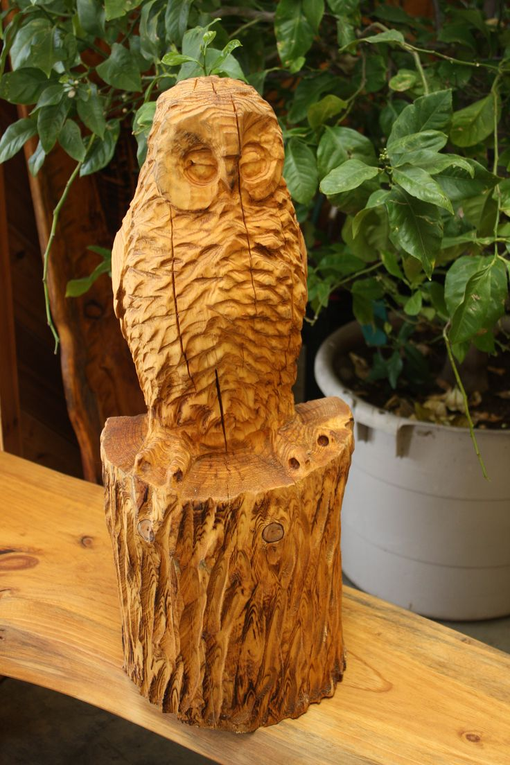 Chainsaw carved owl by shawn corbin of chippewa valley