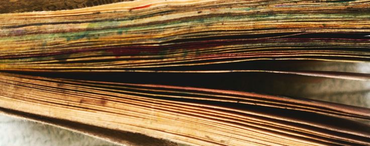 pages of the details book
