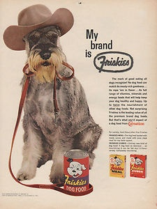 1961 Friskies Ad featuring Mini Schnauzer wearing cowboy hat and ready for his walk.