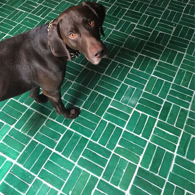 zellige tiles gives floor awesome and