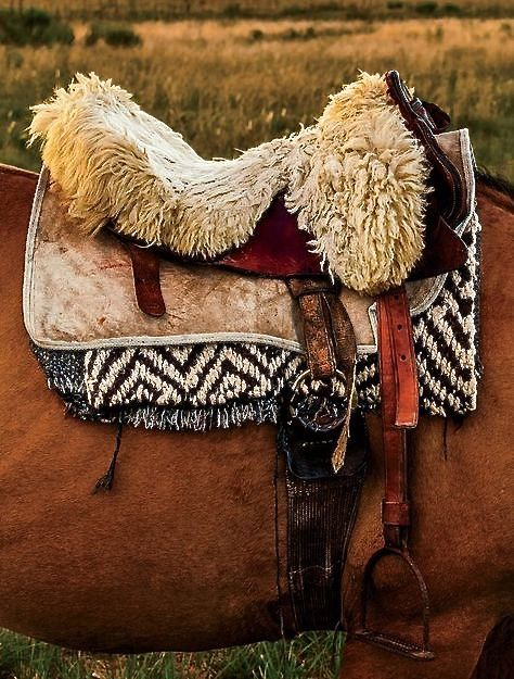 Gaucho Saddle
