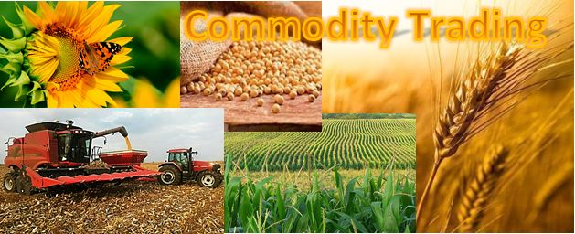 MCX DAILY COMMODITY NEWS & LEVELS - 18 October 2016:  HIGHLITES:  1. LME Copper to Stay Range-Bound Trading. 2. Brent, NYMEX gain in Asia ahead of API figures, China data awaited. 3. Gold mostly steady in Asia as Fischer comments on rate outlook noted.