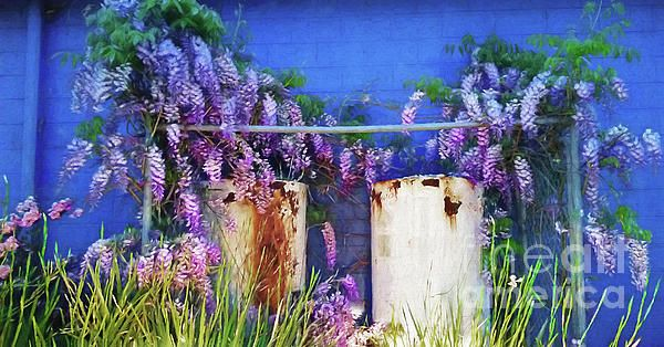 An image I captured at a commercial property where the long garden in front of the blue wall is just left to look after itself. Sometimes the contrast between beauty and age or ugliness can make a lovely picture. #Beauty before #Age by #Kaye_Menner #Photography Quality Prints Cards Products with a money-back guarantee at: https://kaye-menner.pixels.com/featured/beauty-before-age-by-kaye-menner-kaye-menner.html