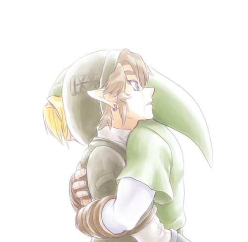 Some further theorizing of the Hero's Shade thing said that TP Link could be OoT Link and Malon's kid...