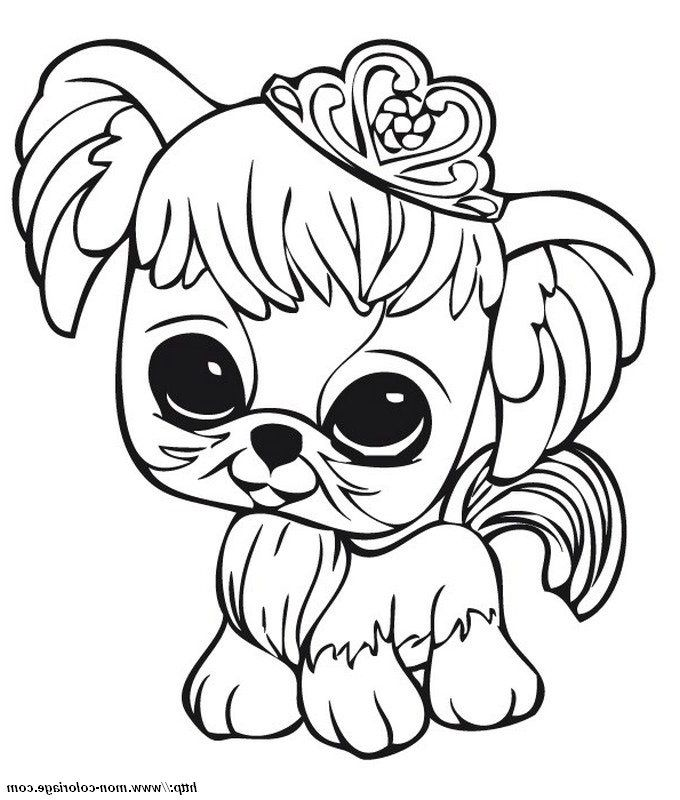 Img Id Img 7162 Coloriagepetit Dog Coloring Page Animal