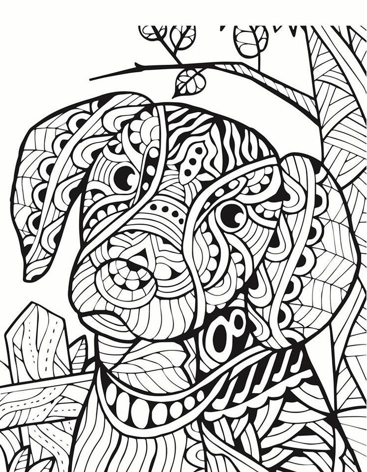 Dog zentangle | Animal coloring pages, Dog coloring page ...