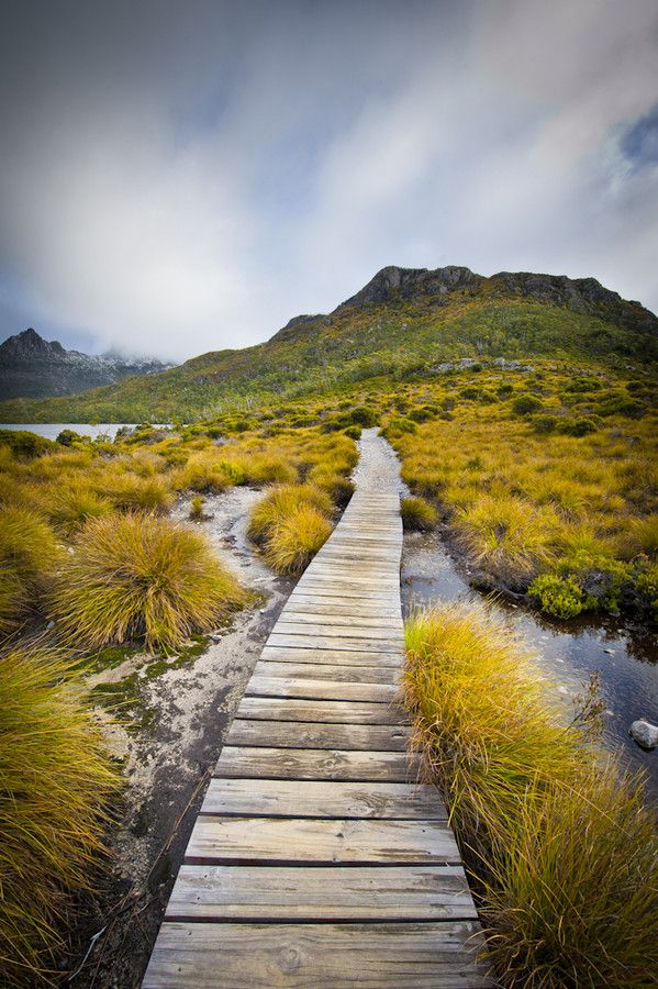 Boardwalk at Cradle Mountain by JPW  Photography on 500px