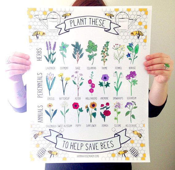 Plant These to Help Save Bees 16×20″ Poster *OR* 8×10″ Print – jen Manthey