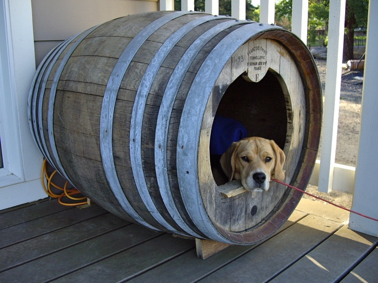 13 best images about lola on pinterest mansions green for Barrel dog house designs
