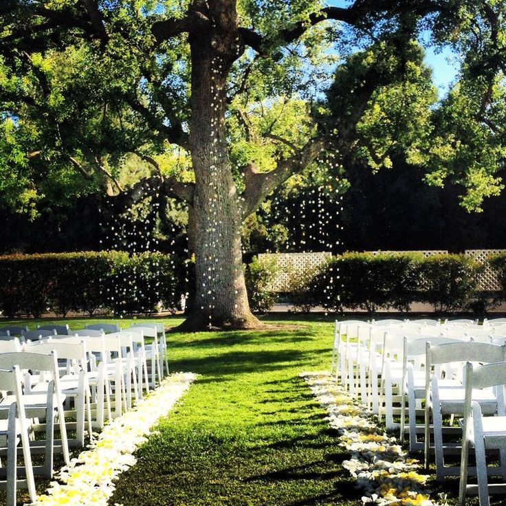 It's raining petals! At Stockdale Country Club Bakersfield
